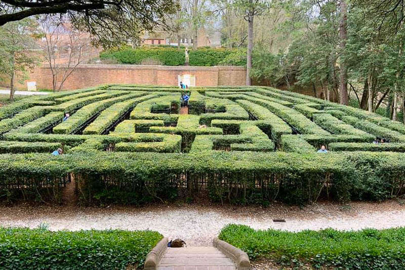 Lost in the Thomas Jefferson's hedge maze.