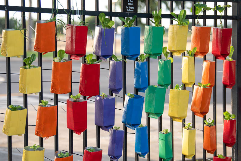 Container garden hanging on fence